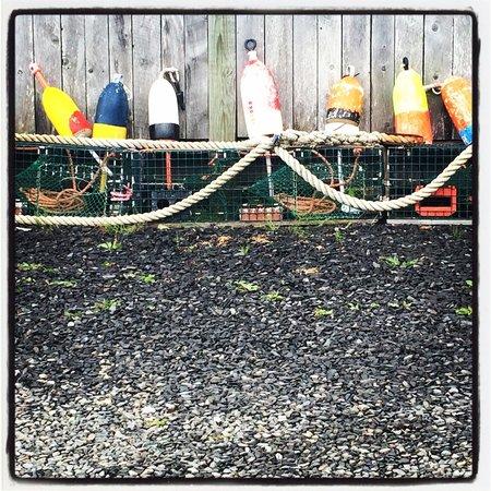 Waterman's Lobster Pound : Watermans lobster pound