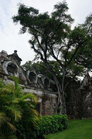 Hotel Hacienda Cocoyoc: Grounds