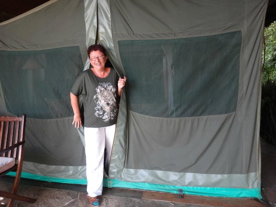 Fig Tree Camp : tent