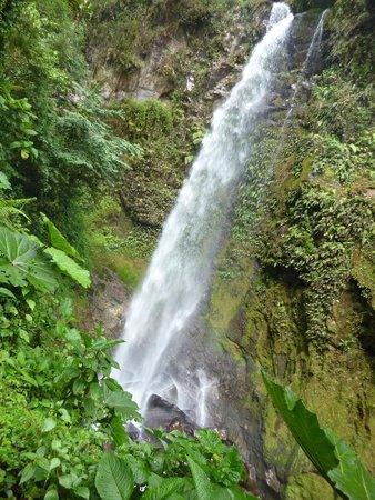 Los Establos Boutique Hotel: Waterfall