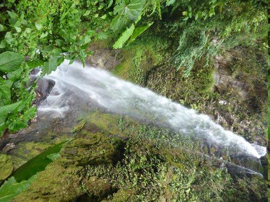 Los Establos Boutique Hotel: Waterfall