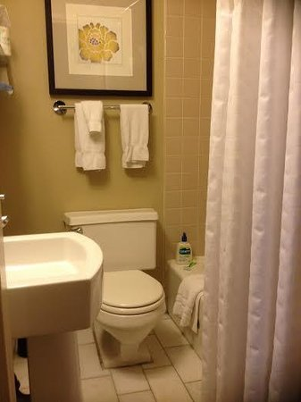 Inn of Chicago: Tiny bathroom