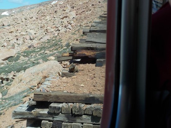 Pikes Peak Cog Railway: More wildlife.