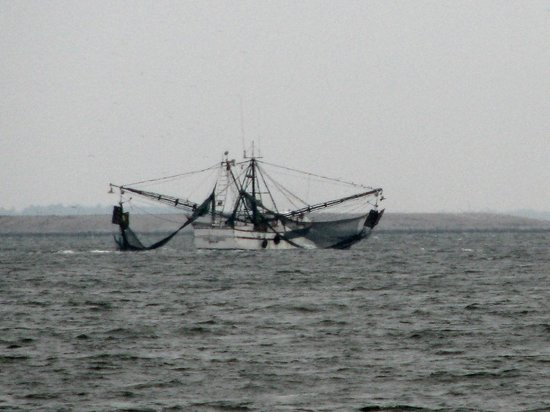 Fishing Pier: shrimp boats returning with dinner