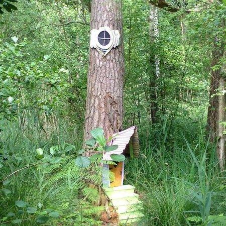BeWILDerwood: Def Idea for the garden