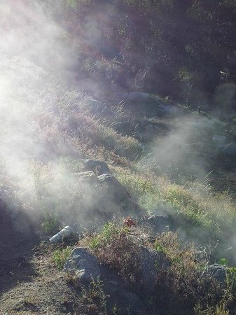 Mount Princeton Hot Springs Resort: steam rising from hot spring coming out of ground!