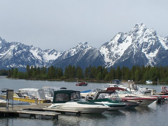 Colter Bay Village : marina