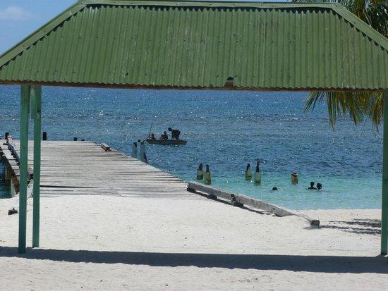 Pro excursions Bayahibe: la plage de saona