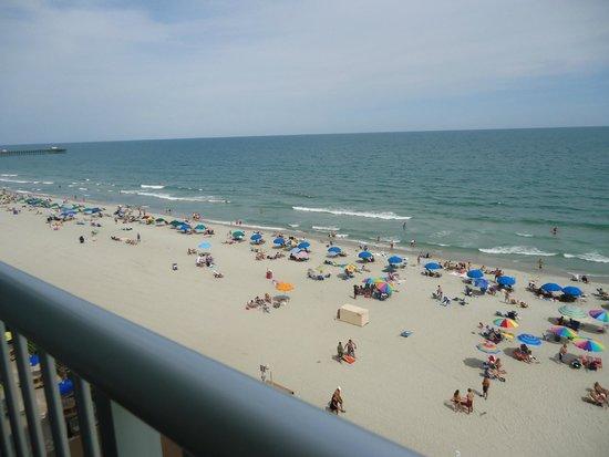 Sands Ocean Club Resort: myrtle beach sc oceon sands