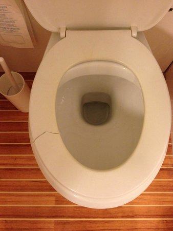 Ibis Verona : Broken toilet seat