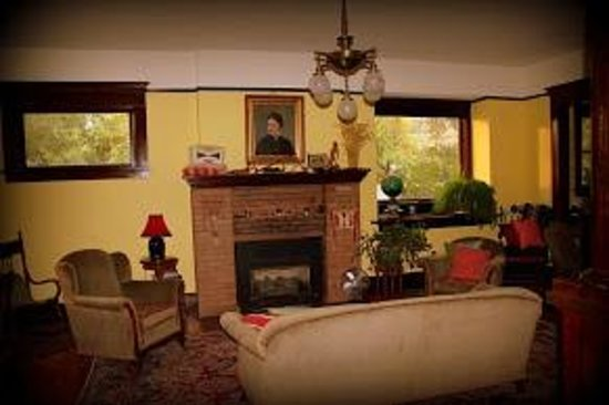 Nine Trees Inn : Fireplace