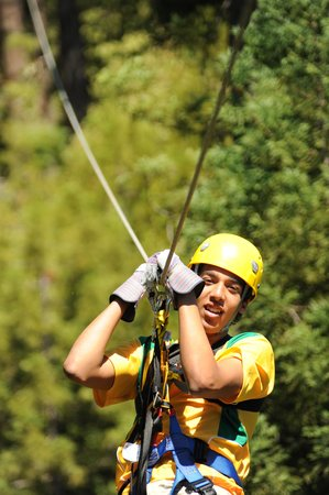 Sonoma Canopy Tours: Zip the Redwoods!