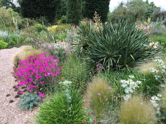 The Beth Chatto Gardens: The Gravel Garden