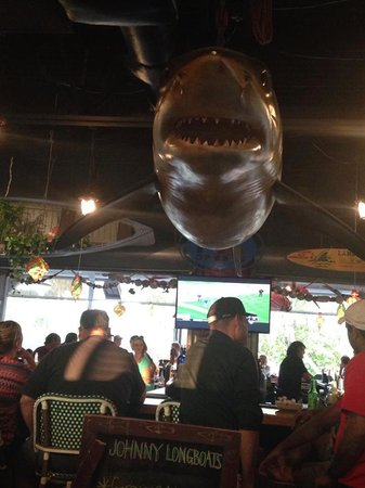 Johnny Longboats: Jaws watching over us