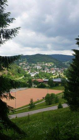 Hotel Maien + Appartement-Schwarzwaldhaus: Zicht over Todtmoos