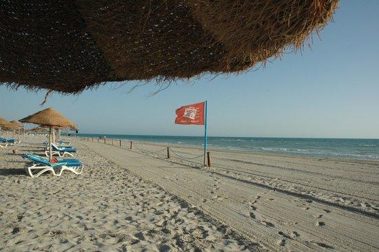 Negresco Veraclub: Spiaggia