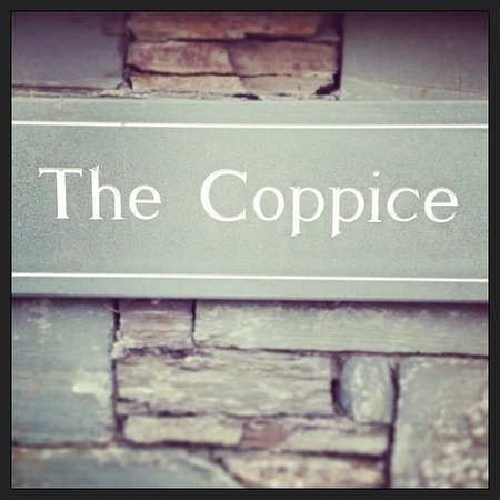 The Coppice Guest House: The Coppice