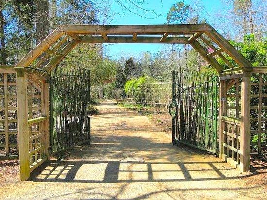 Carnivorous Plant Picture Of North Carolina Botanical Garden Chapel Hill Tripadvisor