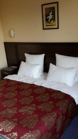 Best Western Plus Atakent Park Hotel: сам номер