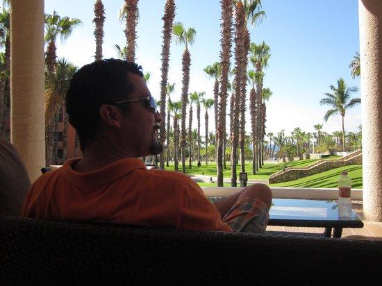 Paradisus Los Cabos: Jardínes enormes y arreglados
