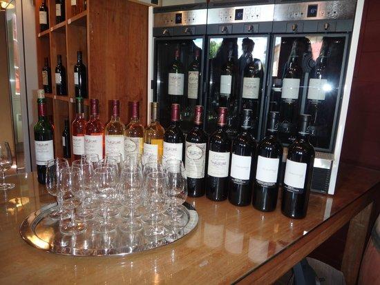 Provence Wine Tours : Degustação Château La Dorgonne