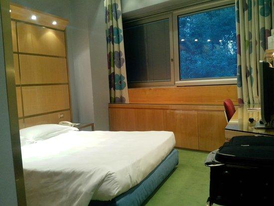 Hotel Albani Roma: una camera