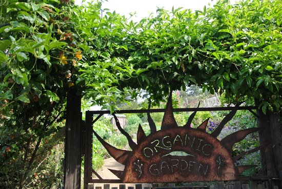 Treebones Resort: Garden