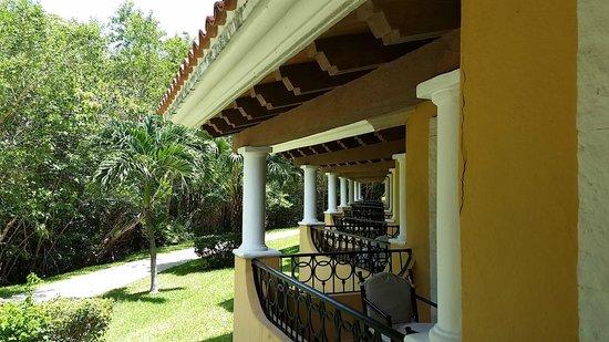 Secrets Capri Riviera Cancún: Tropical room view facing the jungle