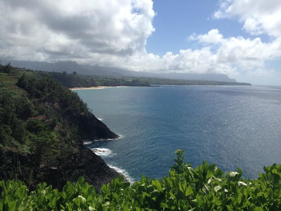 Kilauea Point National Wildlife Refuge : Another View...