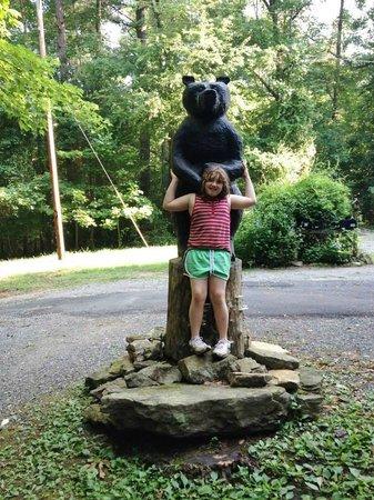 Cavender Creek Cabins Resort: Nature at it's best!!!