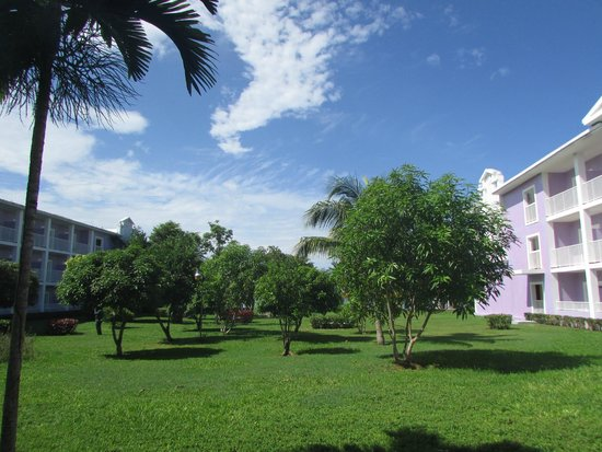 ClubHotel Riu Negril: grounds