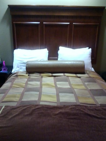 Best Western Premier KC Speedway Inn & Suites: comfy bed