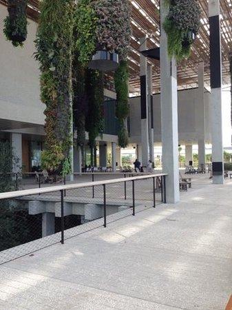 Perez Art Museum Miami: Lindíssimo!