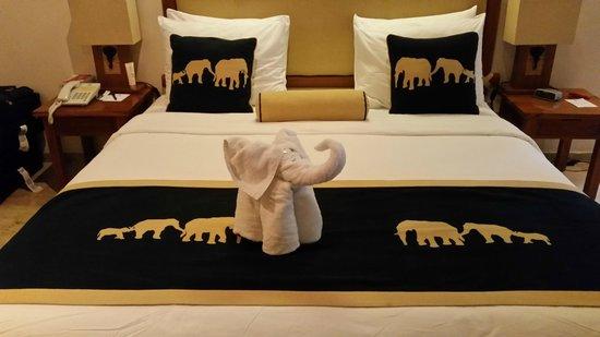 Elephant Safari Park & Lodge: Our beautiful room
