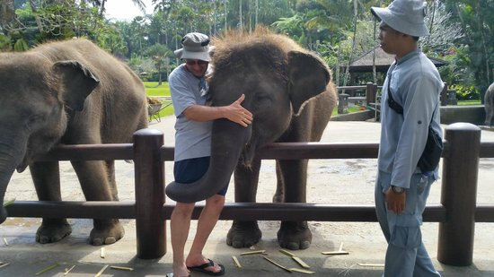 Mason Elephant Lodge: Hugs for all
