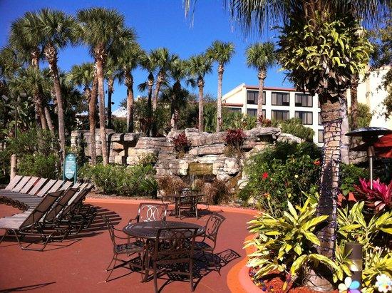 Radisson Resort Orlando-Celebration : Great outdoor space!