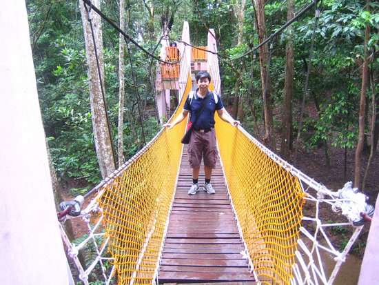 Gunung Lambak: The suspension bridge at Gunung Lamak