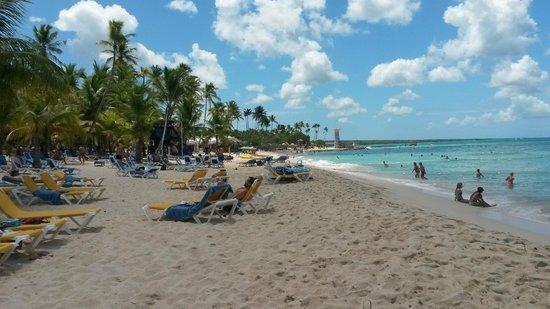 Viva Wyndham Dominicus Palace: Beach