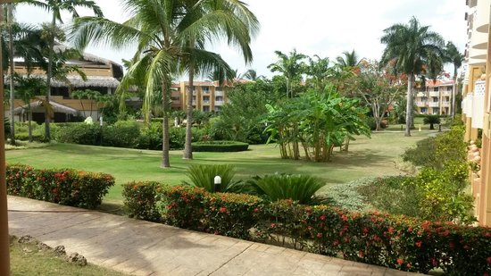 Viva Wyndham Dominicus Palace: Grounds