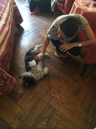 Chez Josephine : Rocco