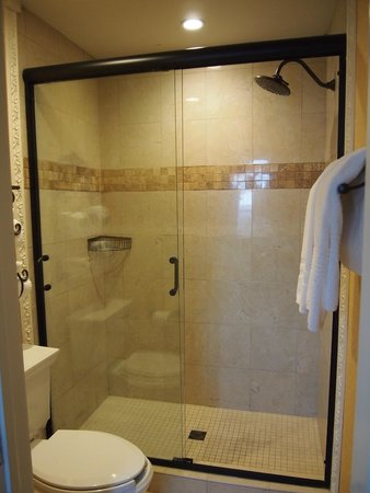 The Vendue Charleston's Art Hotel: Room 215 bathroom shower