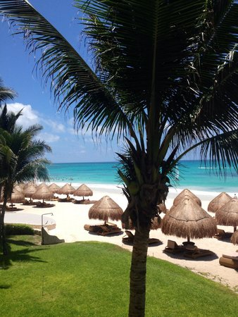 Iberostar Grand Hotel Paraiso: Playa