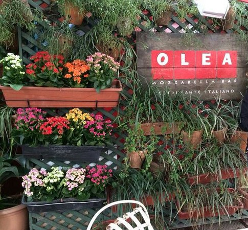 Olea Mozarella Bar: fachada