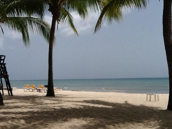 Iberostar Cozumel : from my wonderfully shaded beach chair