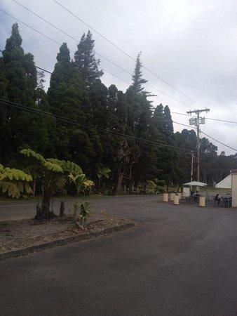 Eagles Lighthouse Cafe: Parking
