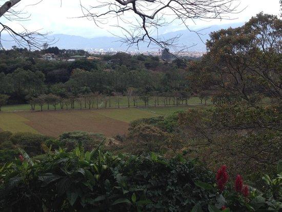 Finca Rosa Blanca Coffee Plantation & Inn: View from the balcony