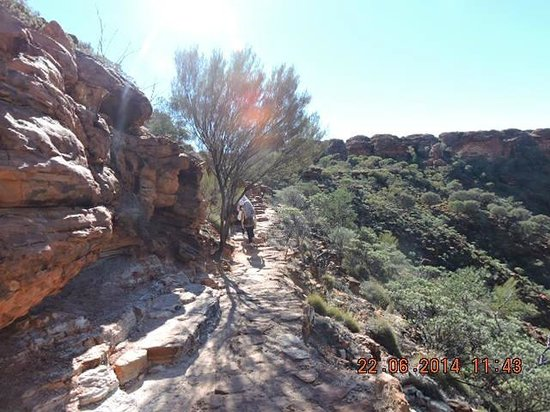 Kings Canyon Resort : View from the top of the Rim Walk