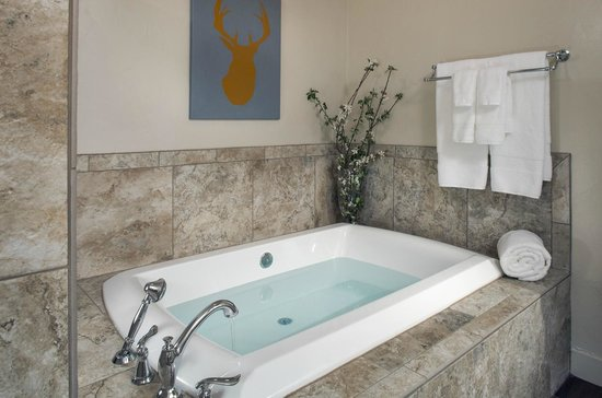 Antlers on the Creek Bed & Breakfast : Air tub in Lightner Creek.