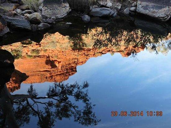 Kings Canyon Resort : Creek Walk