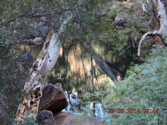 Kings Canyon Resort: Creek Walk